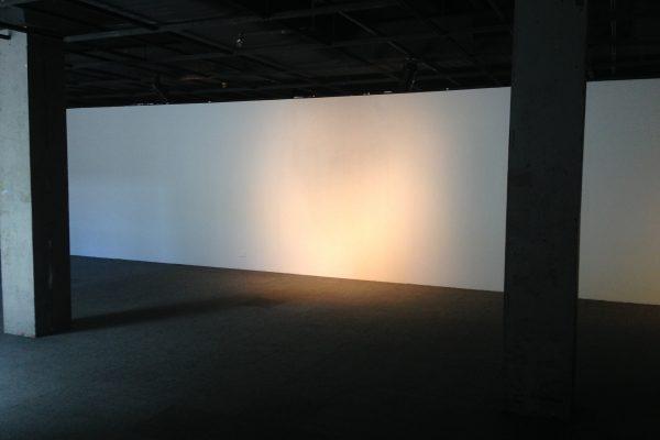 One and Three Tasmanias, exhibition view, 2014